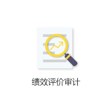 1.专业解答财税问题; 2.审核企业财务资料、项目资料;                                            3.针对企业财务问题给出专业指导建议;                               4.出具绩效评价审计报告。